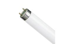 Лампа Osram L36/640 G13, ЛЛ белая, 36 Вт