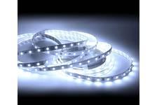Лента LED верх. свеч. IP33 12В 14,4Вт/м SMD5050 Бел/хол 6500К 60Led/м Energy