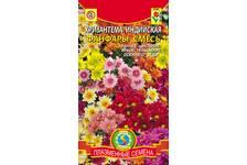 Семена Хризантема Индийская Фанфары 20 шт А (по 10 шт) цветной пакет (Плазменные семена)