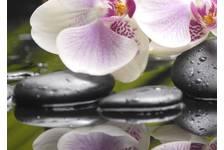 Панно 3 Belani Азалия Орхидея 250 х 350 мм, фисташковый