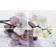 Пано Terracotta.Pro Alba Orchid 600х400  мм Фотография_0