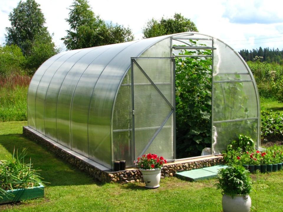 Как правильно выращивать овощи в теплице из поликарбоната?