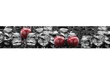 Фартук для кухни Лед и Вишня (3000х600х1,5 мм), матовая