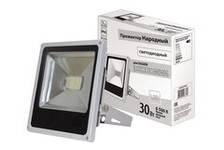 Прожектор светодиодный СДО30-2-Н 30Вт,6500К,серый TDM
