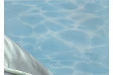 Панно Березакерамика Лазурь Дельфины 2, 250х350 мм