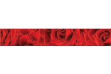 Фриз Березакерамика Престиж Роза, 350х54 мм, красный