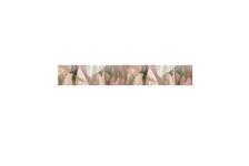 Фриз Березакерамика Фрезия Магнолия 500х54 мм, розовый