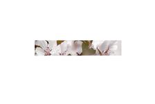Фриз Березакерамика Азалия Сакура 350х54 мм, бордовый