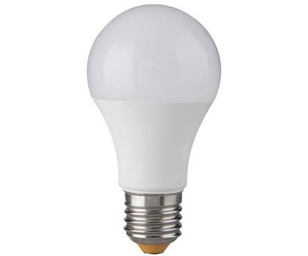 light bulb for outdoor lights.jpg