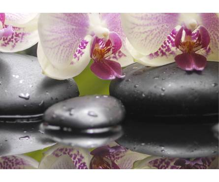 Панно 4 Belani Азалия Орхидея 250 x 350 мм, фисташковый Фотография_0